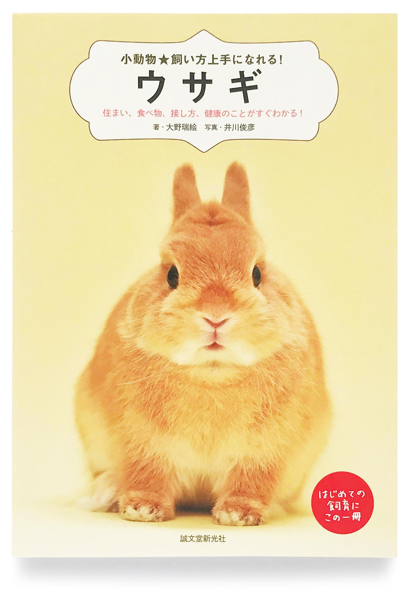 『小動物☆飼い方上手になれる!「ウサギ」』